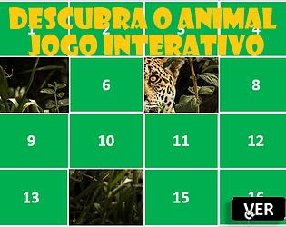 DESCUBRA O ANIMAL