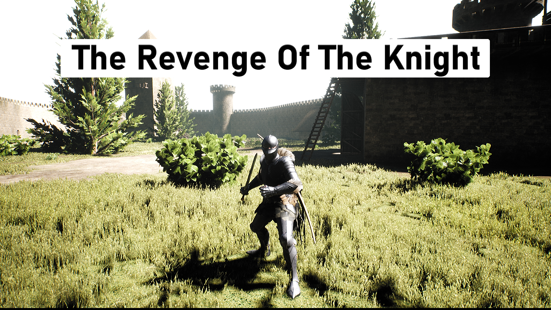 The Revenge Of The Knight