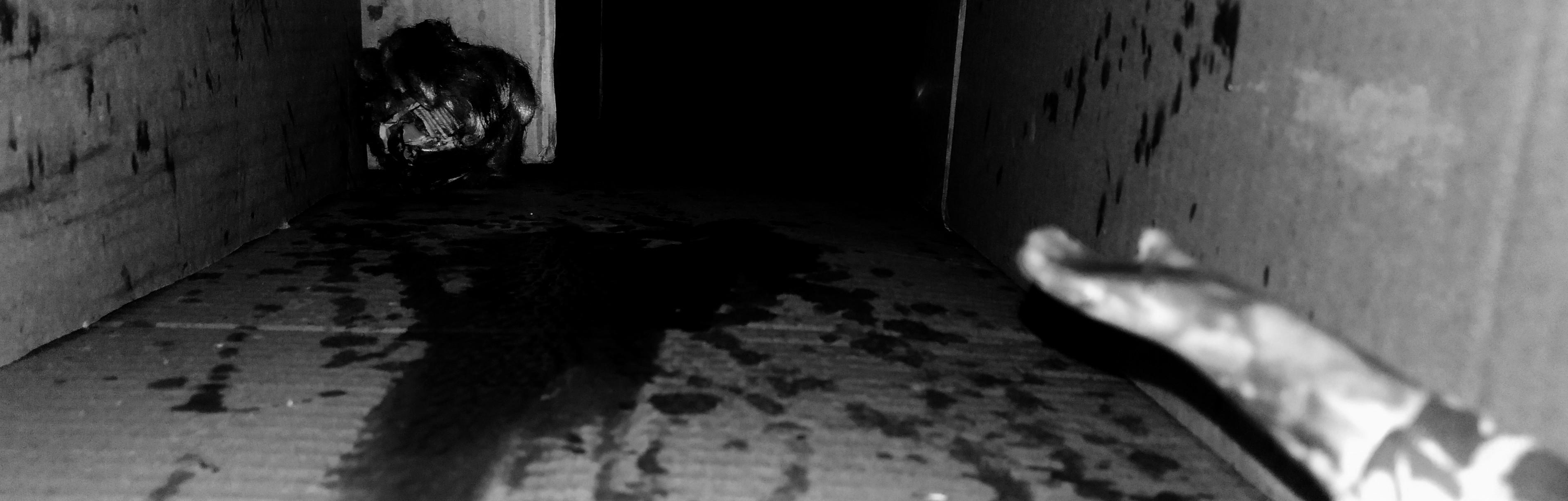 Darkness Under My Bed DEMO