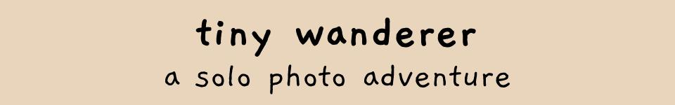 tiny wanderer