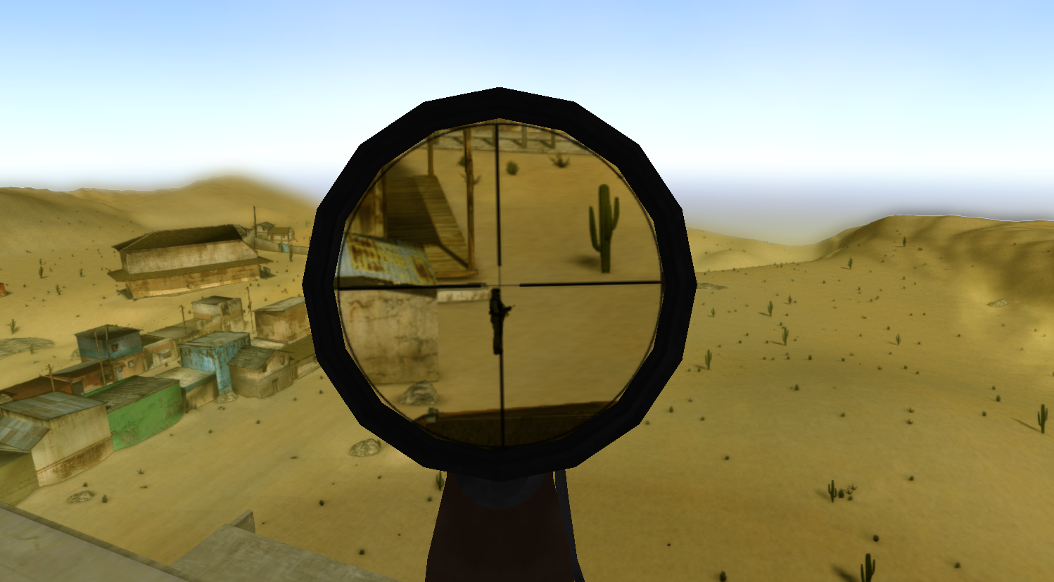 Player View
