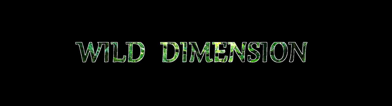Wild Dimension